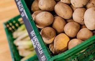 Obst & Gemüse (saisonbedingt und nach  Verfügbarkeit)